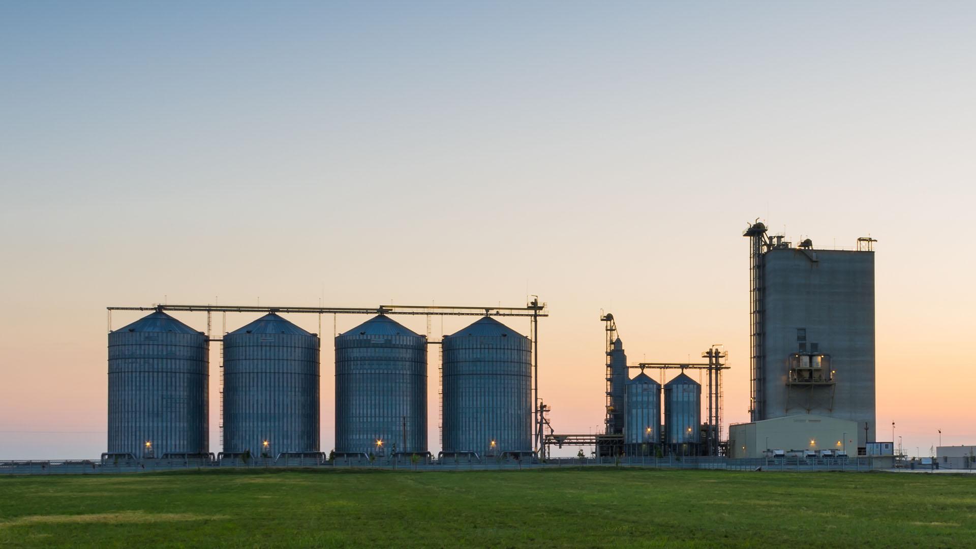 GMS Grain